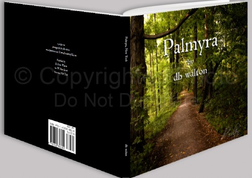 Palmyra Book